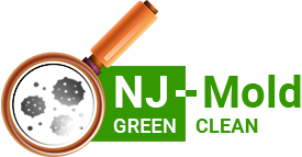 NJ Mold Testing & Remediation LLC